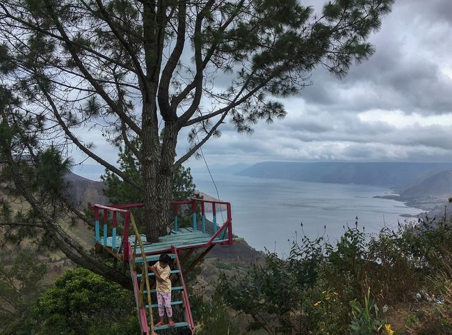 A girl stand on the stairs at Toba Lake Tree Plant Sky Cloud - Sky Nature Water #urbanana: The Urban Playground Beauty In Nature Day Outdoors Tranquility Growth Horizon Over Water Architecture Beach Tranquil Scene Scenics - Nature Land Built Structure EyeEmNewHere
