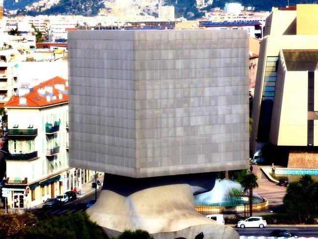 La fameuse tête carré Nice06