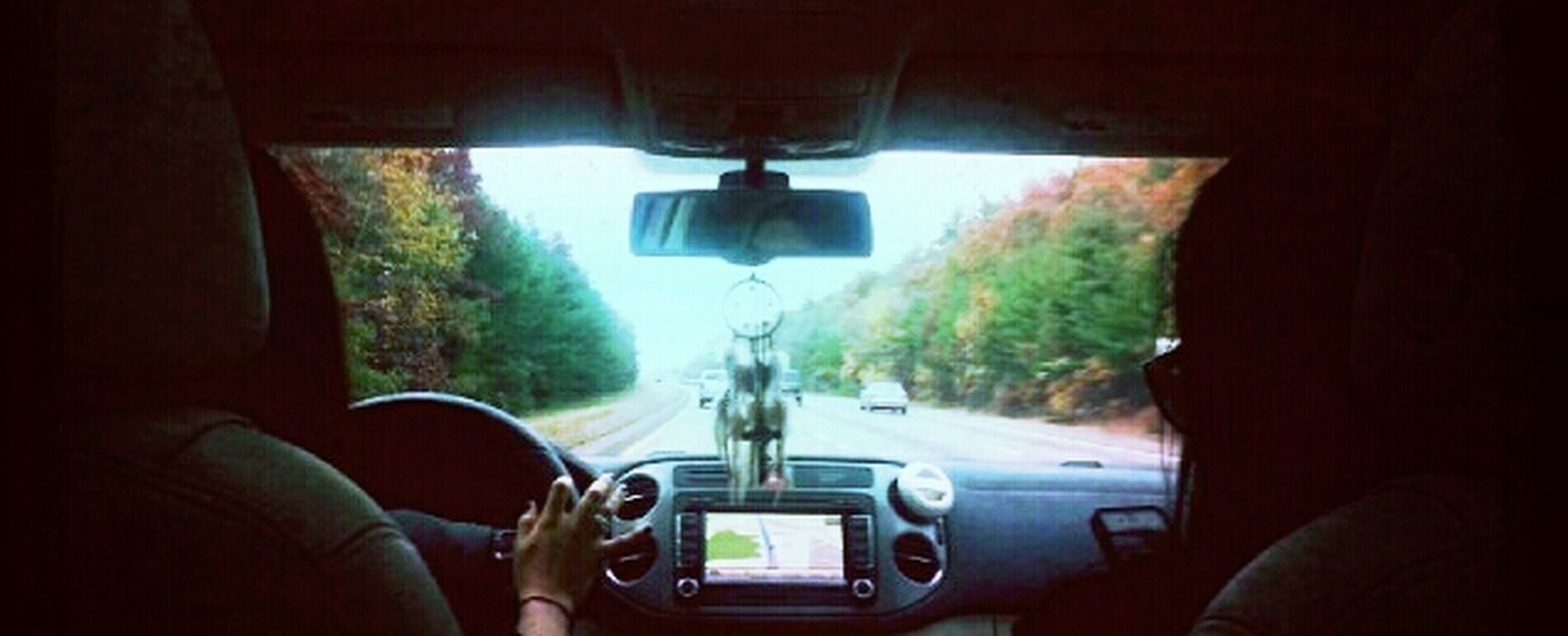 transportation, mode of transport, land vehicle, vehicle interior, men, car, lifestyles, travel, tree, indoors, leisure activity, rear view, on the move, windshield, car interior, journey, person, unrecognizable person