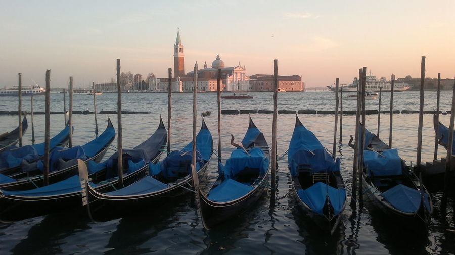 Beautiful Venezia Blue Boats Boats Gondola - Traditional Boat No Edit/no Filter No People Outdoors Travel Destinations Venezia Venezia, Italy Water Miles Away I have been here many times. Venezia is so beautiful but it was difficult to find a place where there are no people. I have been searching for tranquility. Finally I took this photo. Behind me there are thousands of tourists.