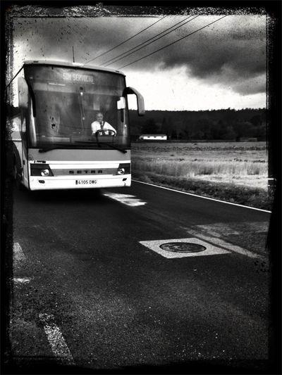 No Es El Gato Autobús, Pero Igualmente Me Espera Totoro