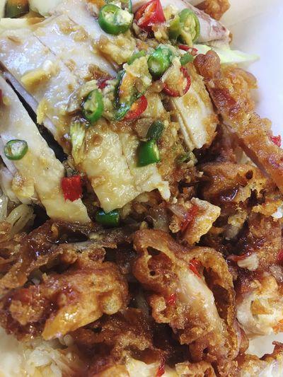 Food Plusmull Bangyai