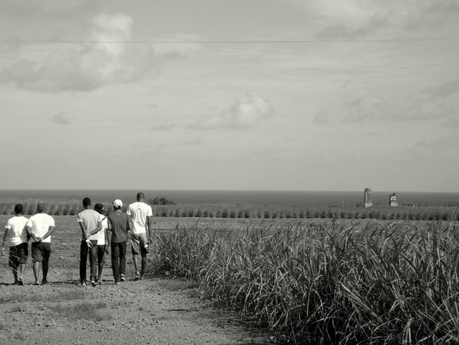 Outdoors Sky Landscape Nature Ishoot Mauritius 🇲🇺 Sugarcane Field Walking Cousins  Blackandwhite