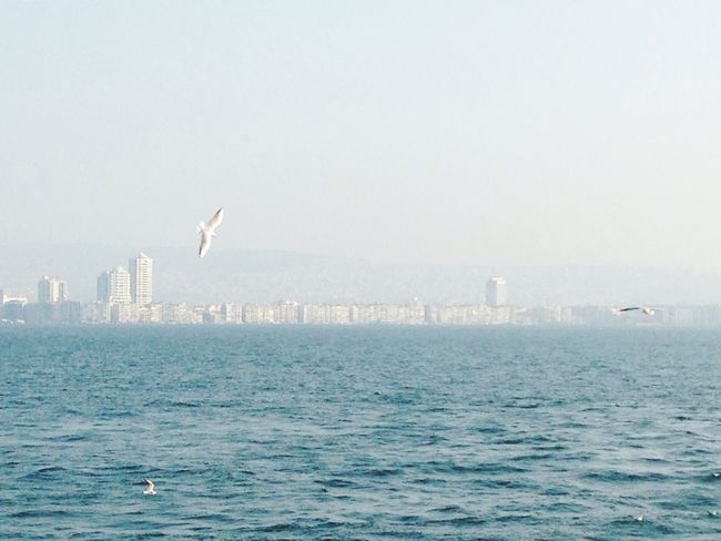 Izmir Sea