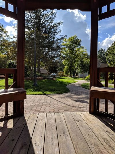 Through the Gazebo Perspectives on Nature EyeEm Nature Lover Perspective Plant Life Green Landscape Symmetry Shadow Banner Elk N.c. Midday Tree Wood Paneling Wood - Material Patio Sunlight Front Or Back Yard Window Sky Architecture Gazebo Entryway Long Shadow - Shadow EyeEmNewHere