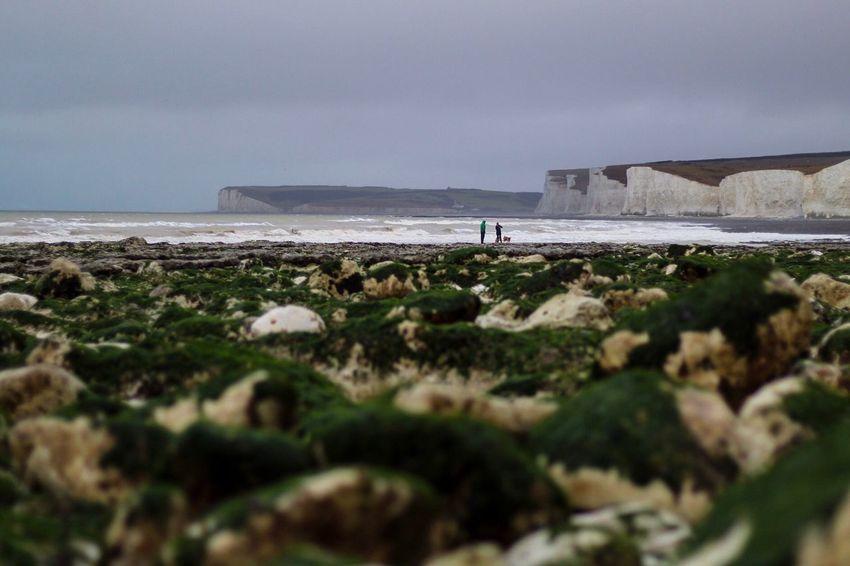 Moody skies at 7am Dog Walking Rain EyeEm Best Shots 50mm Sea Beach Water Nature Outdoors Sky Beauty In Nature Day