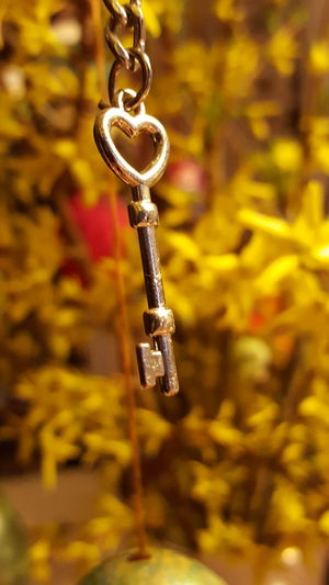 Key of Love Close-up Focus On Foreground Metal No People Little Things Key Yellow Flower