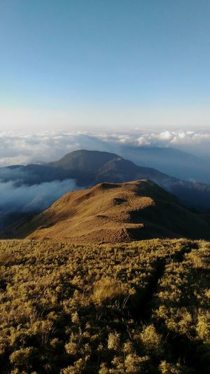 Wanderlust Summit Of 2922 Masl Mt. Pulag Another Check On My Bucket List