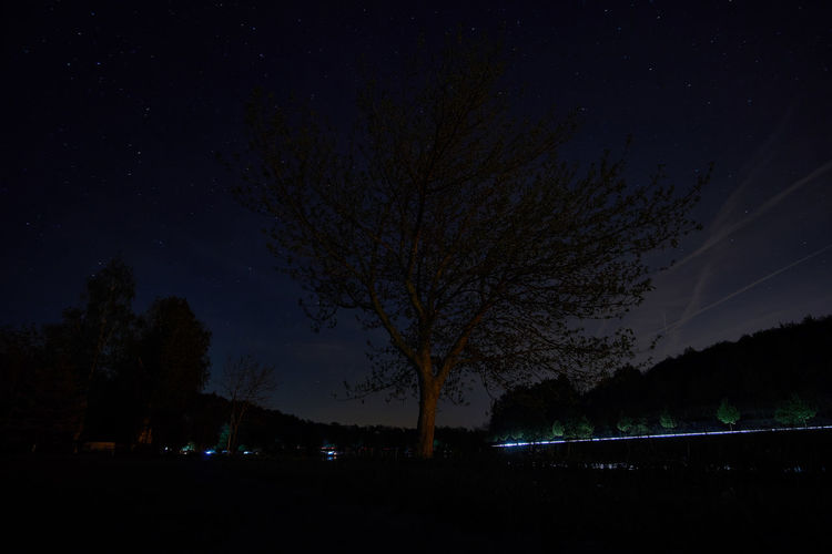 Night on river Moselle Night Nature Sky Landscape Light Trails Tree Glowing Outdoors Illuminated Tranquility Dark Long Exposure Infinity Astronomy Longexposure Astrophotography Bare Tree Scenics Beauty In Nature No People Idyllic Star Field Tranquil Scene Low Angle View Star - Space Plant Silhouette Scenics - Nature Star Land Growth Field