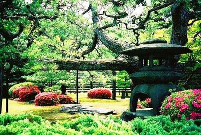 Photography Ctai Pacific Greenscape Landscape_Collection Japan