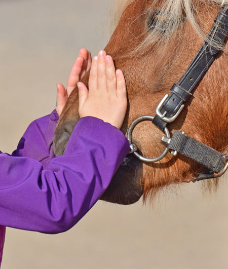 Friends Pony Body Part Child Childhood Hand Human Body Part Human Hand