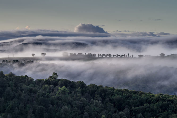 Foggy morning in the foothills between san gimignano and volterra.