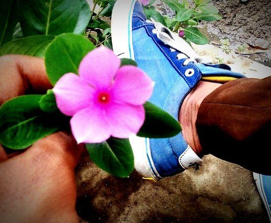 Enjoying Life First Eyeem Photo EyeEm Nature Lover EyeEmFlower Eyeemshoes