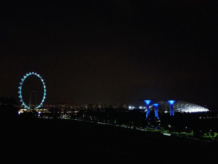 Ferris Wheel Taking Photos Night Singapore Flyer