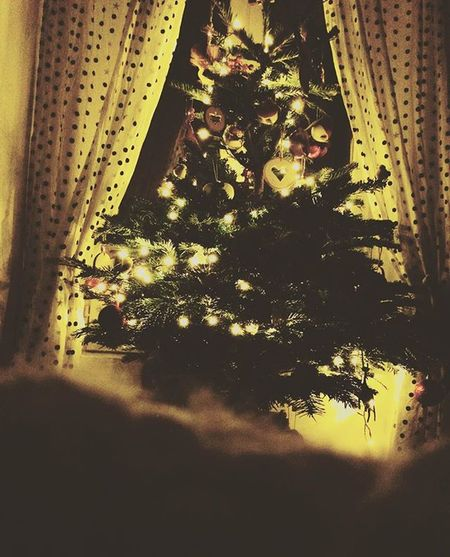 un weekend paisible ❤️ Hiver Coocooning Cosy Chrismastree Hiver Douceur Sapin Sapindenoel