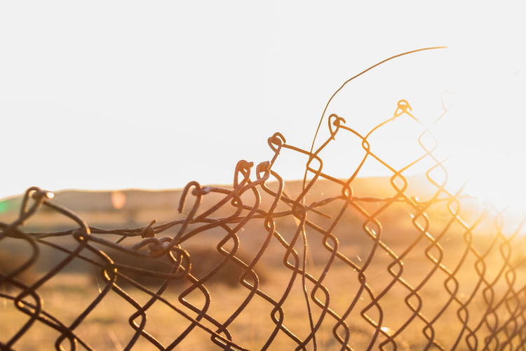 Close-up of barbed wire against clear sky