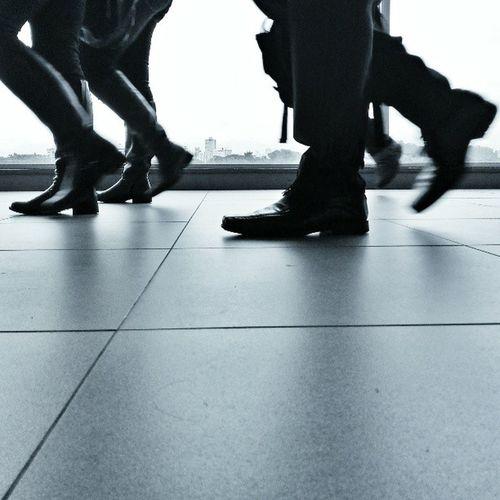 agora todo mundo em uma pena só / one legged walking