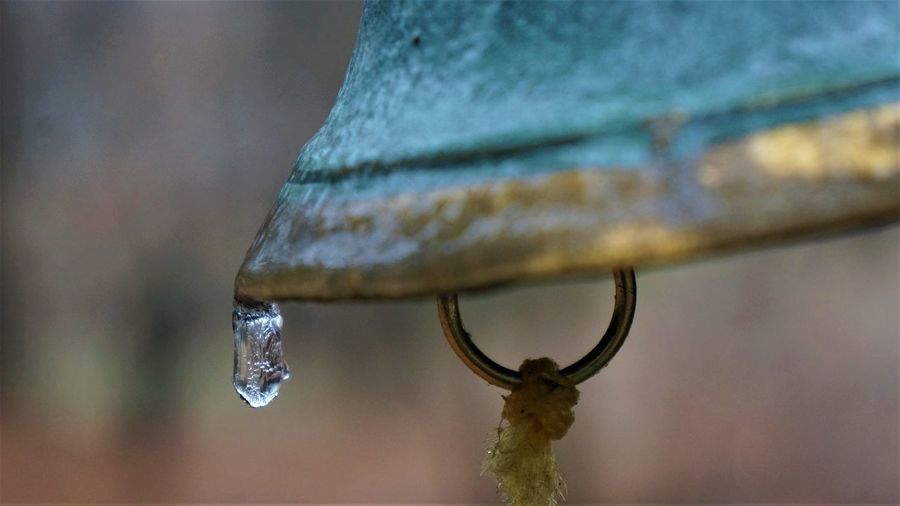 Animal Themes Bell Close Up Close-up Day Drop Droplet Focus On Foreground From My Point Of View Frozen Insect Macro Metal Nature No People Outdoors Teal