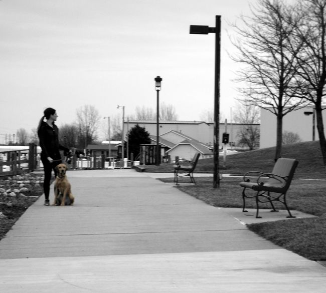Town View Walking Around The City  Morning Walk Dog Dog Life Woman Dog Of Eyeem City Life Shades Of Grey Citydog Dog Walk Fitness Curious Alert Cityscape Dog Love Street Photography Black And White Outdoor Photography Benches Capture The Moment Watching Casual