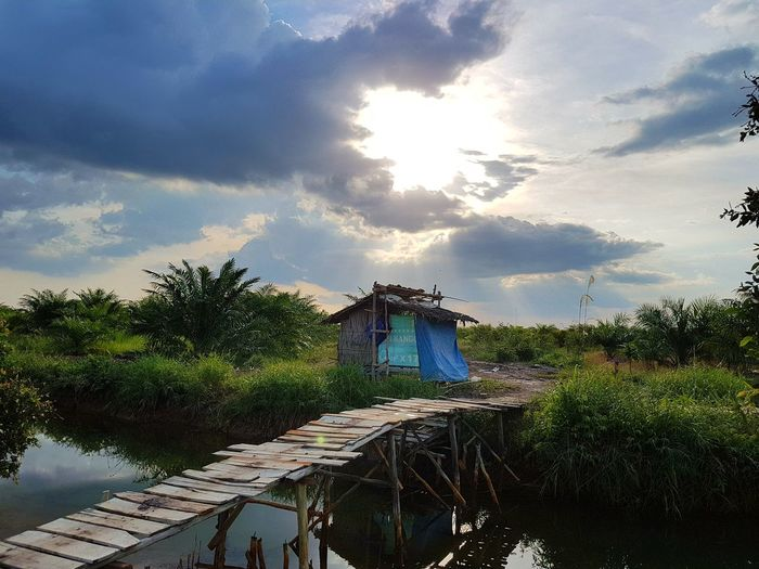 Samsung Galaxy S7 Edge S7 Edge Photography Beautiful Day Nature Relaxation River View Nature Reserve Bridges Bridges_aroundtheworld Bridge Over The River Reflection Hut Huts And Sky Farm Life Farmland Farmlandscape Outdoors Sky Day Nature