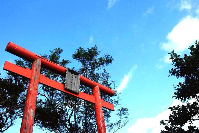 EyeEm Best Shots Landscapes Fine Art Photography EyeEm Gallery EyeEm Best Shots - Nature Blue Sky From My Point Of View Banya 小樽鰊御殿 神社 Fine Art EyeEm Nature Lover