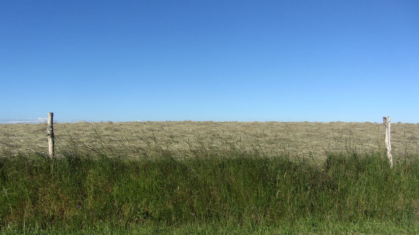 GR65 Invisible Via Podiensis Agriculture Beauty In Nature Blue Clear Sky Day Fence Field Grass Landscape Nature No People Outdoors Rural Scene Scenics Sky