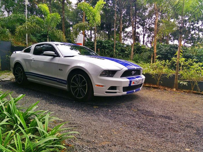 Mustang GT Full On Throttle Imported From Dubai Pedal To Metal Mode On I Am Blessed🔙🔜