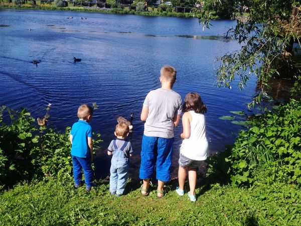Lake Kids Sun Family Family Grass Togetherness Outdoors Water Day Summer Summertime Summer ☀ Children People Nature Child See Park Enten Duck Ducks