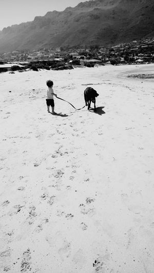 boys best friend Doglover Dogs Boy Sand Mountain Nature Boys Best Friend Fun Joy Dog