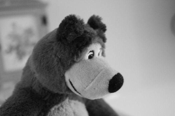 Orso Masha E O Urso ♥ Masha E Orso Masha And The Bear Bear