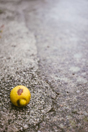 Close-up of yellow fruit on road