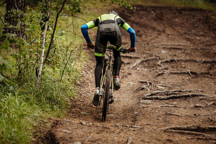 Rear view of men cycling in forest