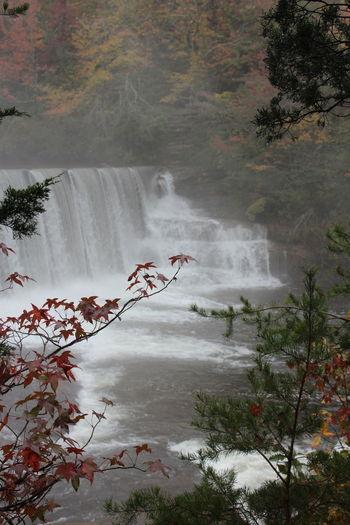 DeSoto Falls Alabama Made Bebe03 Alabama Wonders Fort Payne Riding North T6