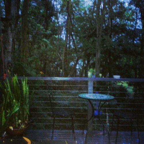 View from my bedroom window Chapelhill
