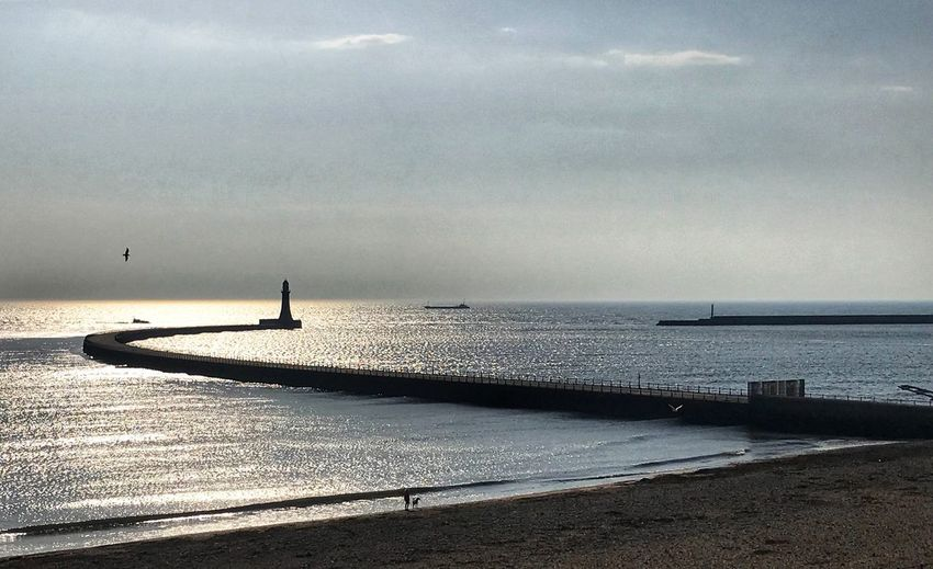 Late afternoon sunshine at Roker Beach Water Sea Sky Horizon Over Water Horizon Beach Beauty In Nature Scenics - Nature Day Cloud - Sky Tranquility Bird Tranquil Scene