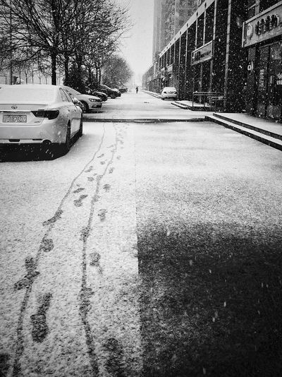 Street in city during winter