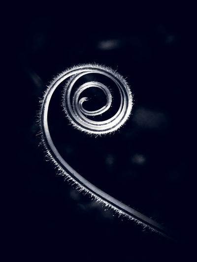 Low angle view of spiral staircase against black background