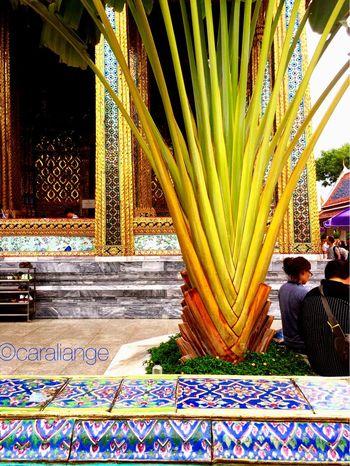 The Grand Palace Thailand Enyoing The View  Bangkok Holiday♡