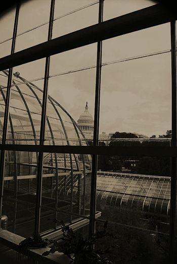 US Capitol Building Americanhistory AmericanPride Traveling Blackandwhite Photography WashingtonDC US Capital