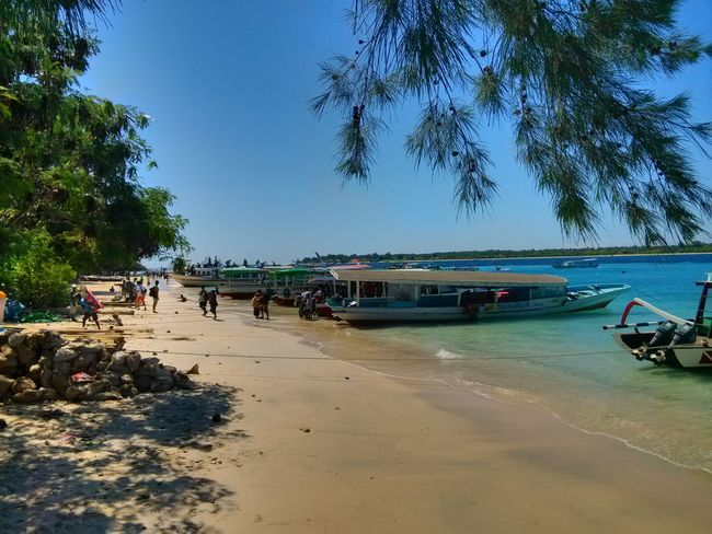 Beach Sand Sea Tree Vacations Blue Water Palm Tree Relaxation Sky Clear Sky Nature Outdoors Nautical Vessel Tranquility No People Day Beauty In Nature Xiaomi Mi2
