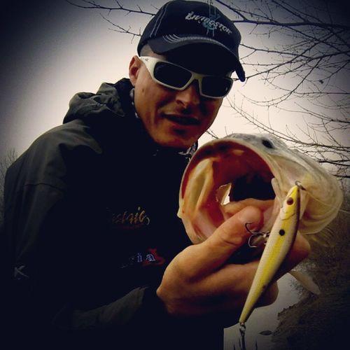 I love jerkbait fishing in Winter time! Livingstonlures Waspcam