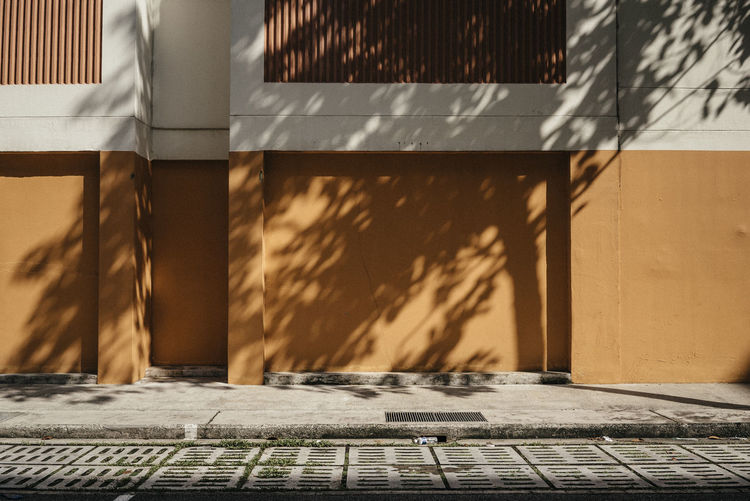 Shadow of trees on building