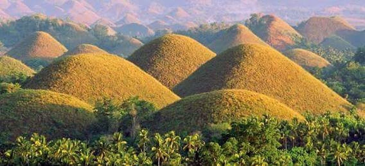 chocolate hills Field Plant Agriculture Pattern