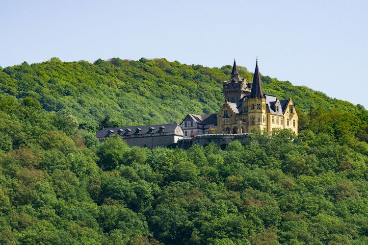 Schloss Rothestein Deutschland Schloss Architecture Building Exterior Built Structure Castle Forest Germany Green Color History Nature No People Outdoors Schloss Rothestein The Past