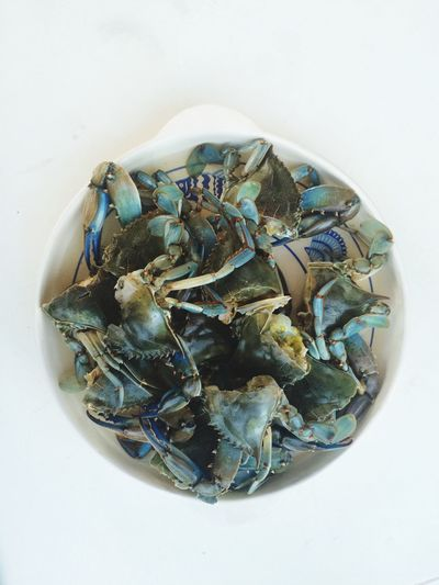 Seafoods Crabs!! Crabs Granchi Omega 3 Fatty Acids Proteins Omega 3 Selenium Eating Good A Taste Of Life White Background