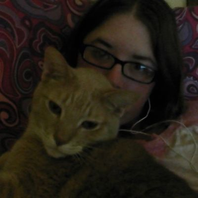 I guess he's found his spot for the night Meow Snugglebug Snuggleslut Catladyproblems