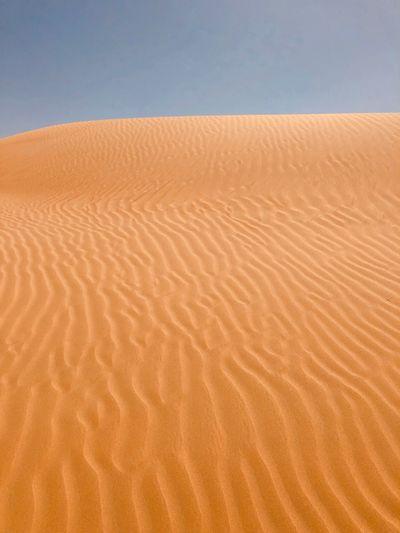 dune pattern Nature Landscape