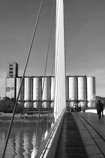 Puertomadero Calatrava Puentedelamujer Bnw_friday_eyeemchallenge Blackandwhite Black And White Black & White Tadaa Community