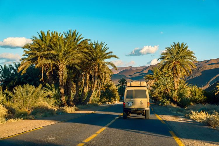 Commercial Land Vehicle Day Land Cruiser Mountain No People Outdoors Palm Tree Road Street Toyota Transportation Tree