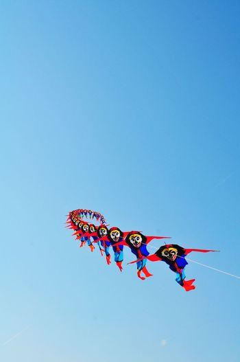 Traditional Kite Festival EyeEm Best Shots EyeEmNewHere EyeEm Selects EyeEm Gallery EyeEm Best Edits Traditional Kite Kite Flying Kite Festival Traditional Kite Festival Layangan Airshow Aerobatics Flying Clear Sky Representing Stunt Sport Blue Red Danger Kite - Toy Kite